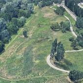 Un nuovo bosco di oltre 2000 piante per Torino nel parco Sangone