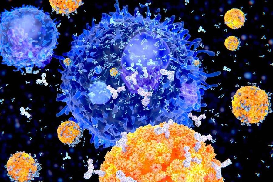 Covid, in Piemonte primo trattamento con anticorpi monoclonali: una nuova arma contro il virus
