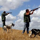 Casalese, animali allevati e immessi in natura per essere cacciati: la condanna del Tavolo Animali e Ambiente